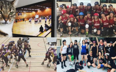 Recap of the season – Dock City Rollers